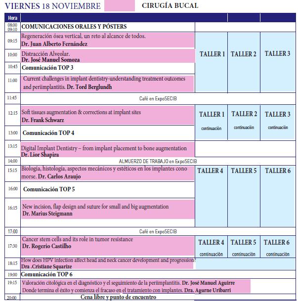 Programa Cientifico 18 Noviembre XIV SECIB